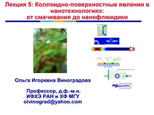 Лекции Фундаментальные основы нанотехнологий 2011. Часть 2