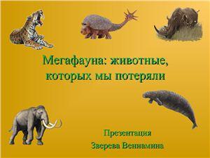 Мегафауна: животные, которых мы потеряли