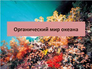 Органический мир океана