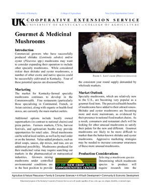 Hill Deborah. Gourmet & Medicinal mushrooms