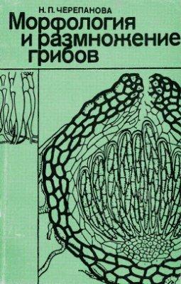 Черепанова Н.П. Морфология и размножение грибов