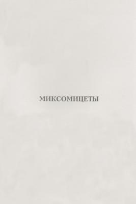 Янчук Т.М., Якубенко Н.В. Миксомицеты