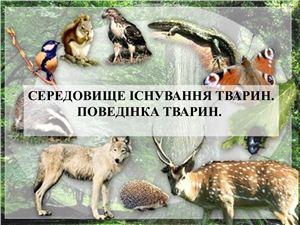 Середовище існування тварин. Поведінка тварин