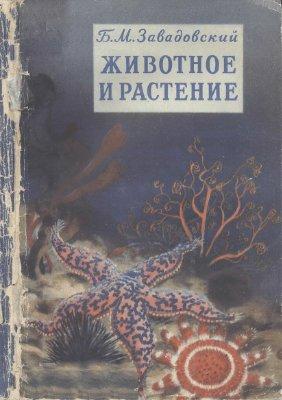 Завадовский Б.М. Животное и растение: Маленькое введение в науку о жизни
