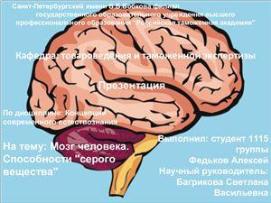 Мозг человека. Способности серого вещества
